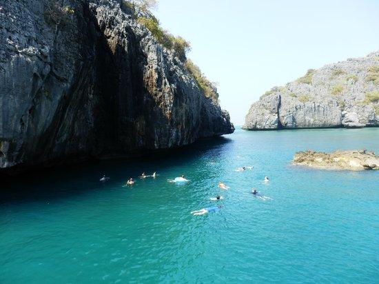 Blue Stars Kayaking: Snorkelling