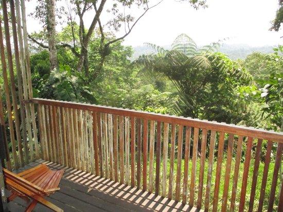 Hamadryade Lodge: Vista de la habitación en la Cabaña