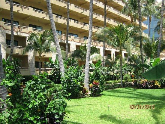 Paradise Village Beach Resort & Spa : Hotel