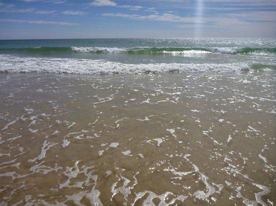 Noosa North Shore Beach Campground : Beautiful water
