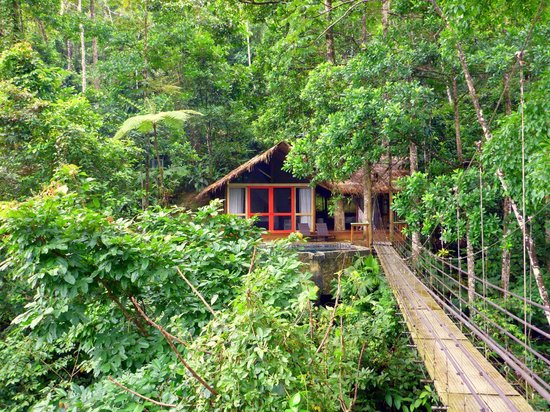 Pacuare Lodge : Honeymoon Suite