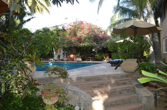 The Bungalows Hotel: A view of the courtyard.
