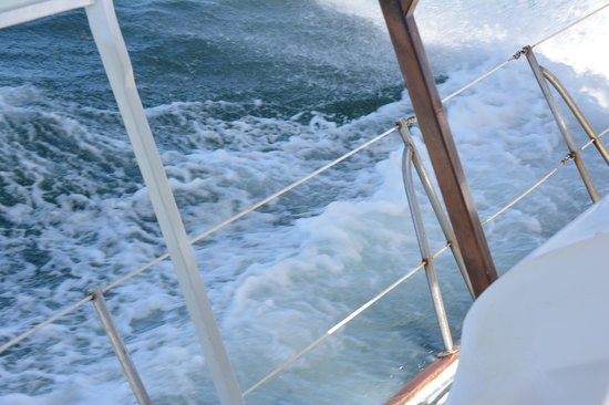 Serendipity Charters-Sailing Costa Rica: picked up some good wind!