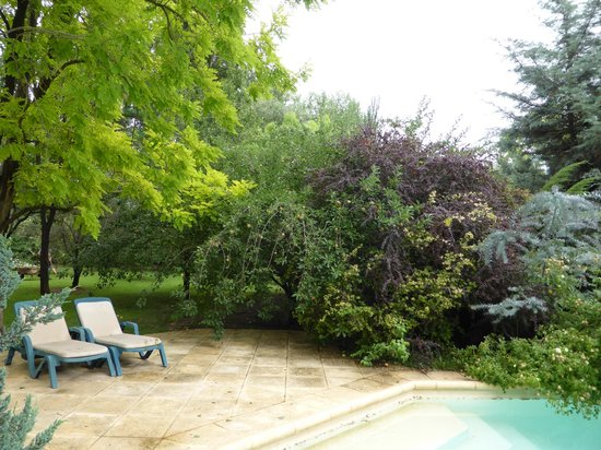 Casa Glebinias: Delightful pool, gardens and orchard