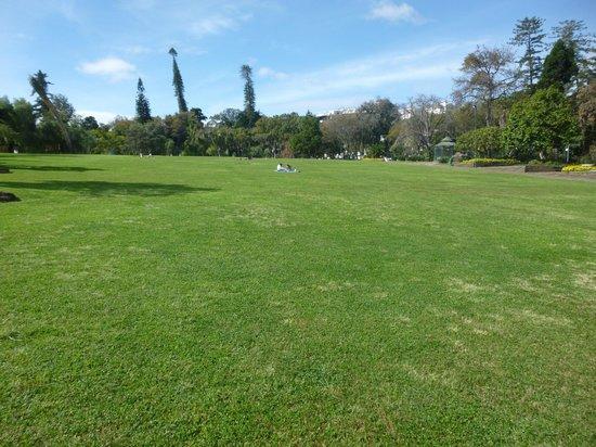 Santa Catarina Park : central lawn