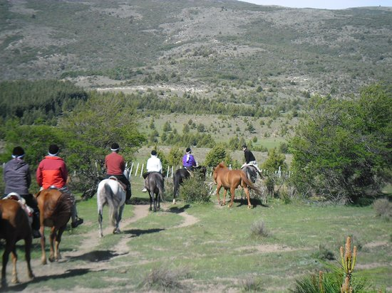 Cabalgatas Haneck : Cabalgando / Riding
