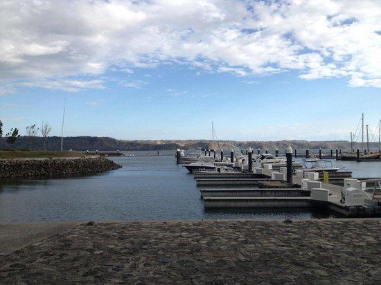 Marina Papagayo: Empty marina