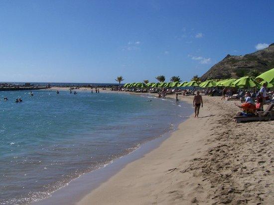 Carambola Beach Club: beachfront