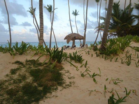 Grand Palladium Bavaro Suites Resort & Spa: path to the beach