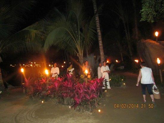 Rhythms of the Night by Vallarta Adventures: Welcoming committee