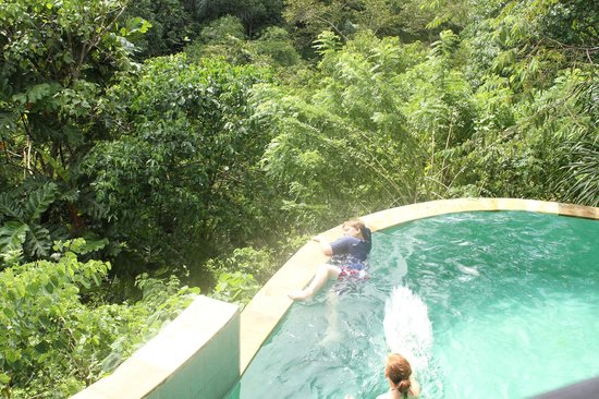 Villa Awang Awang: the infinity pool