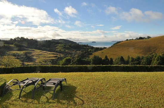 Matakana Castle: The view from the terrace...