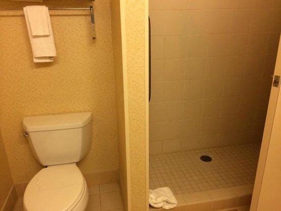 Fairfield Inn & Suites Wausau: Toilet