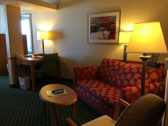 Fairfield Inn & Suites Wausau: Couch