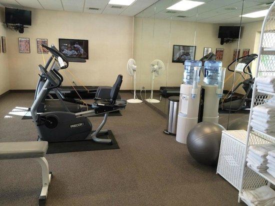 Fairfield Inn & Suites Wausau: Exercise Room