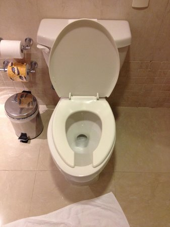 Occidental Costa Cancun: toilet seat smaller than toilet