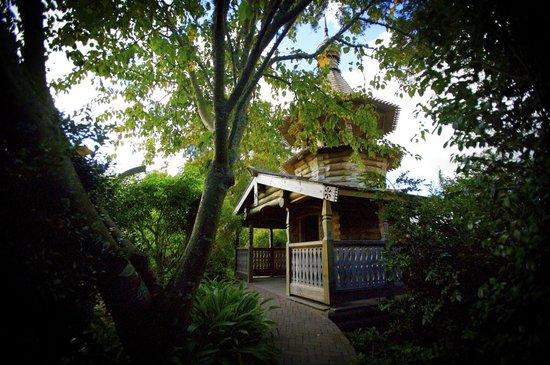 Rogers Rose Garden - Picture of Hamilton Gardens, Hamilton - TripAdvisor