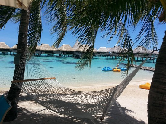 Hilton Moorea Lagoon Resort & Spa : Robinson Crusoe would have loved it!!!