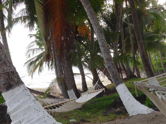 Tango Mar Beachfront Boutique Hotel & Villas: hamacs