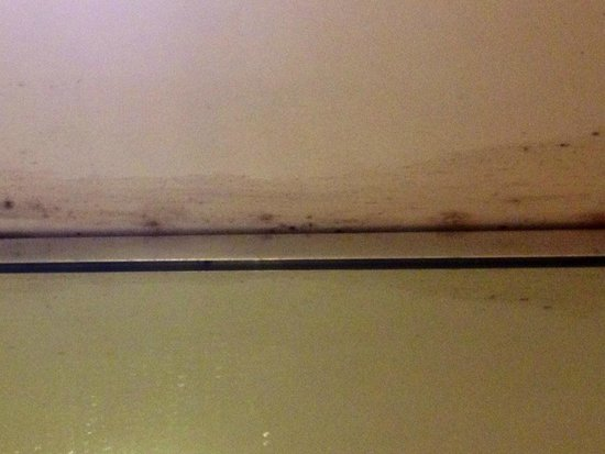 Days Inn Hotel New York City-Broadway: One side of the moldy ceiling