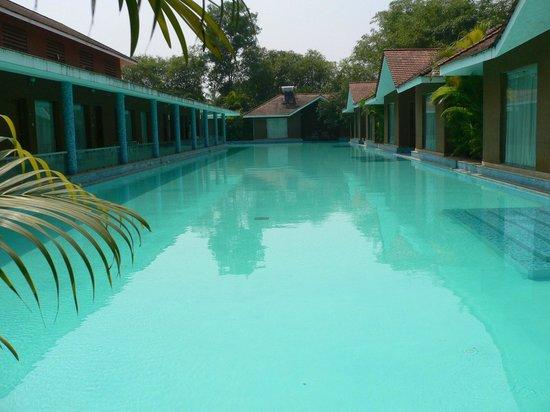 Pool Picture Of Saj Earth Resort Nedumbassery Tripadvisor