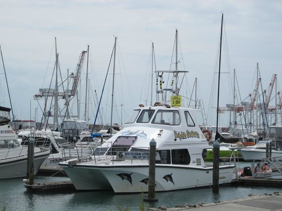 Butler's Swim With Dolphins: the boat changed name