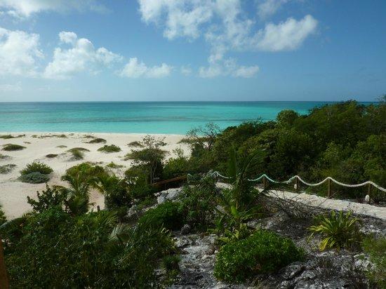 Shannas Cove Resort: Walkway to the Beach