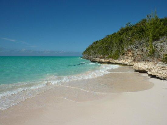 Shannas Cove Resort: Beach area