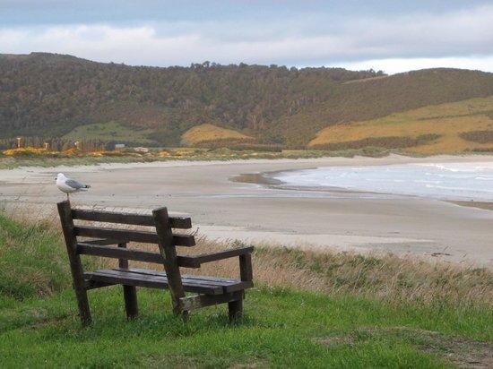 Curio Bay Salthouse: sit here, enjoy sun set