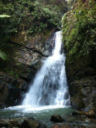 The Mine Trail (La Mina): La Mina Falls