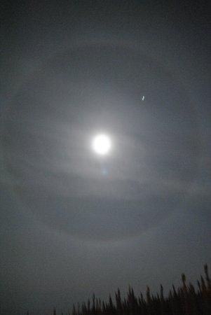 Northern Alaska Tour Company : Moon Aura