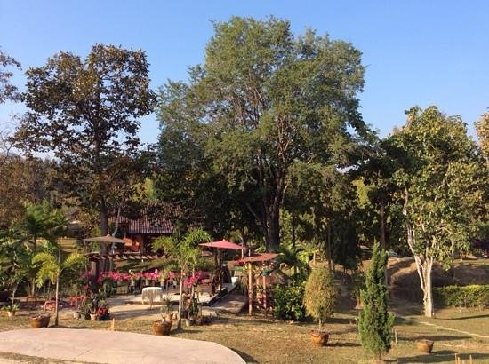 Ban Rai Tin Thai Ngarm Eco Lodge: some of the garden