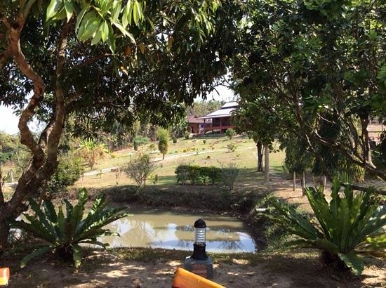 Ban Rai Tin Thai Ngarm Eco Lodge: the bungalows at the top of the hill.