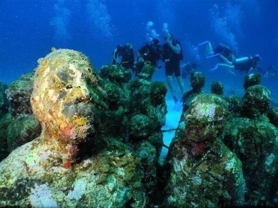Solo Buceo Dive Shop : february 2014
