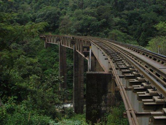 Western Ghats: Bridge