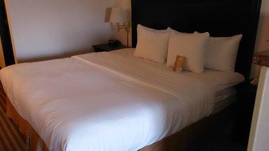 Comfort Suites Columbia River: Bedroom area