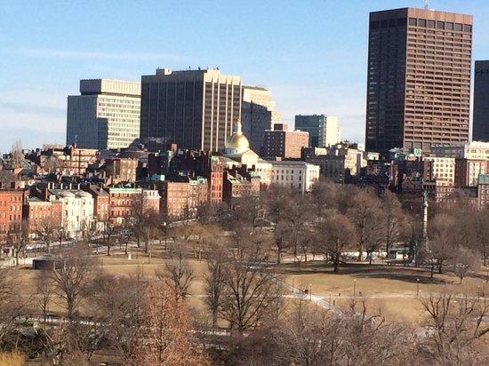 Taj Boston : The Boston common in February