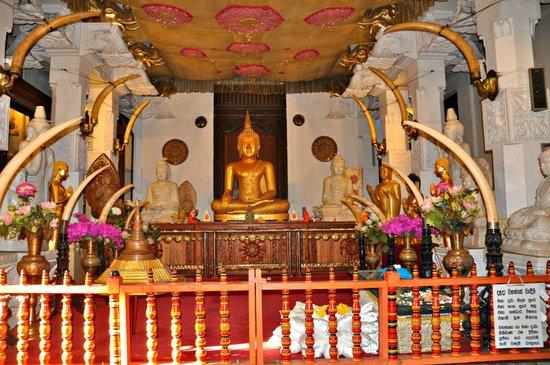 Hotel Casamara: Храм Зуба Будды