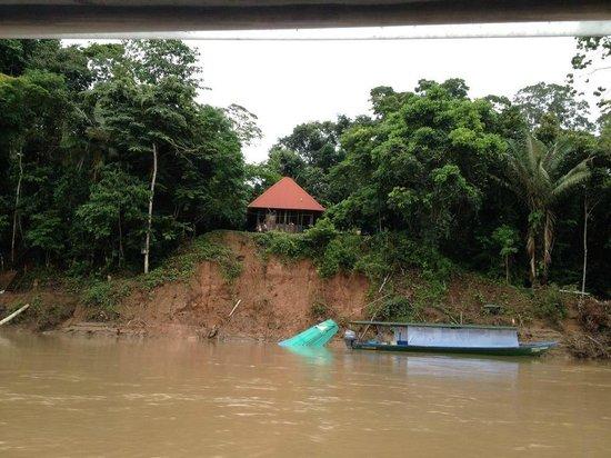 Refugio Amazonas: Vista del banco de Tambopata