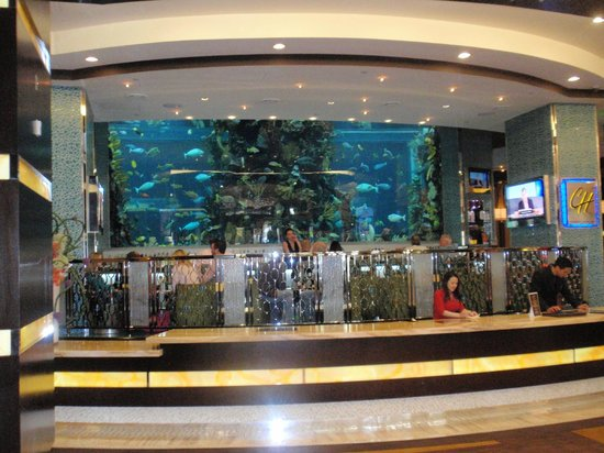 Chart House Restaurant: Chart House fish tank