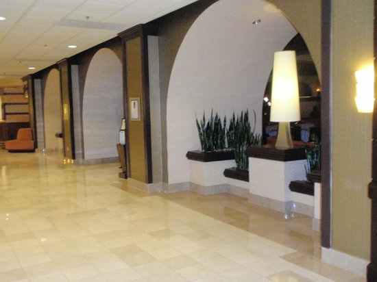 Los Angeles Airport Marriott : Lobby