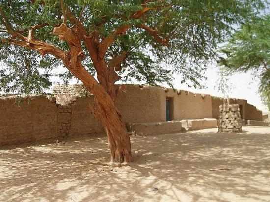 Niger: Água, um oásis