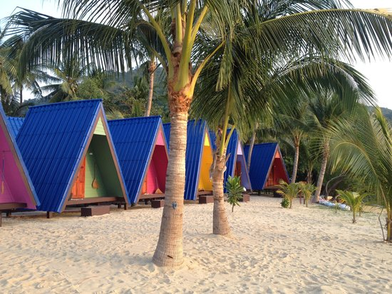 New Hut Bungalows: in front of my hostel