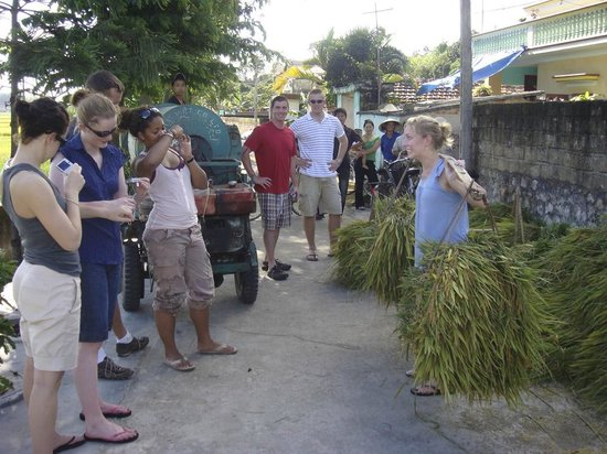 Viet Vision Travel - Day Tours: A girl tried to carry rice straw - picture at Dong Trieu home stay