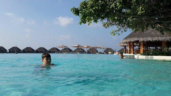 Dusit Thani Maldives: The biggest swimming pool  of the Maldives.
