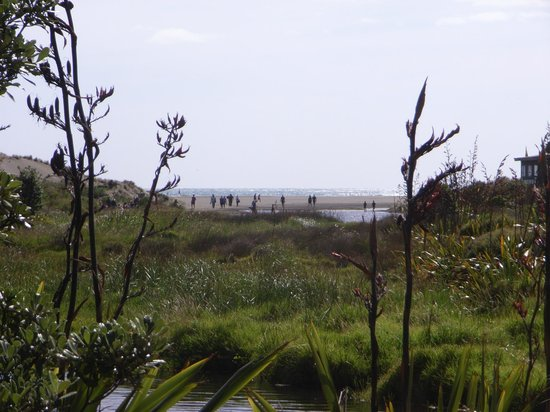 Karekare Beach : bit of a walk