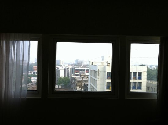 Hotel Express Towers: Window View