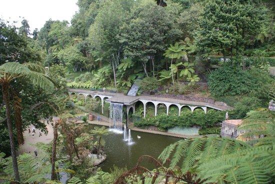 Monte Palace Tropical Garden : El lago