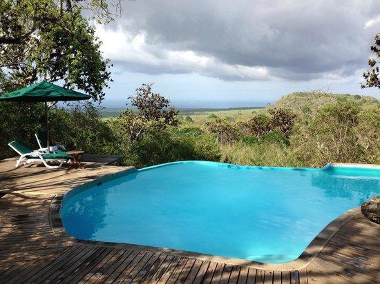 Galapagos Safari Camp: Бассейн с видом на местный пейзаж