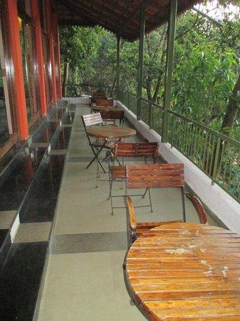 Tea Valley Resort: hotel